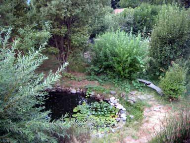 Zelenica: Radionica izrade vrtnog jezerca i obilazak biodinamičkog imanja